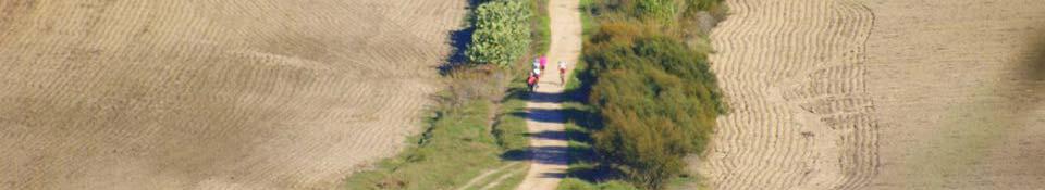 Recorrido y perfil Trail
